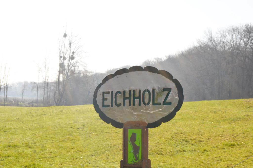 ACHETER MAISON EICHHOLZ